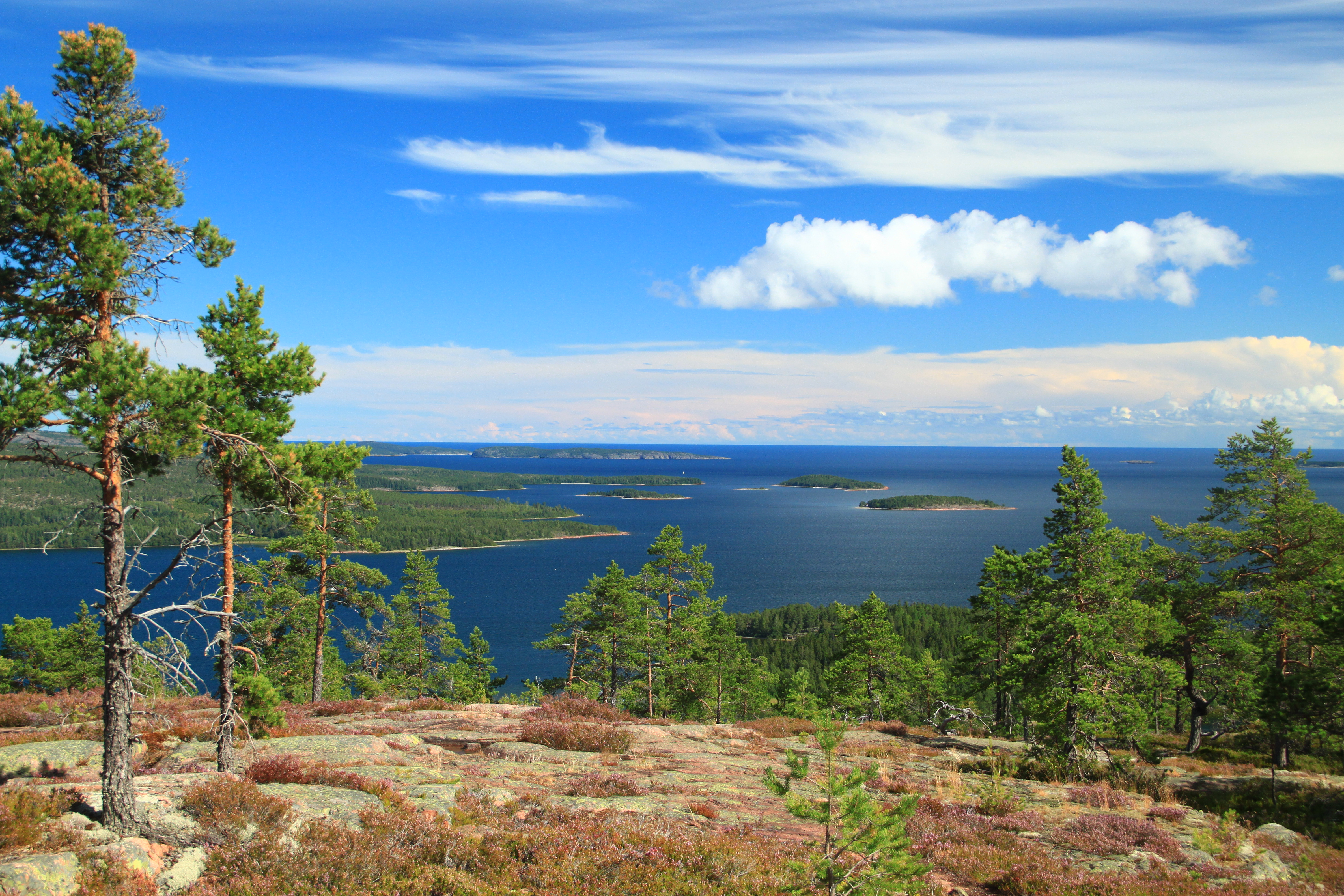 Taman nasional Skuleskogen
